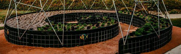 Aquaponics Dome at EcoTerra