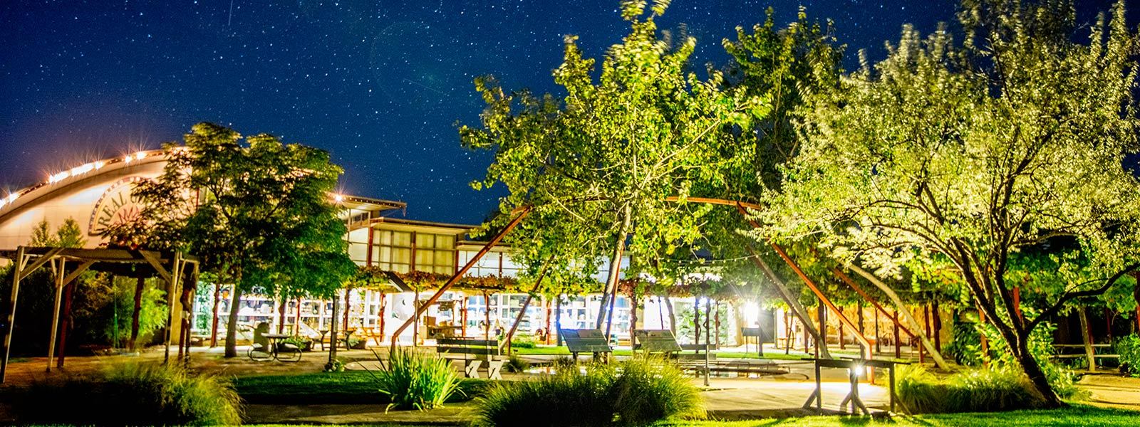 Ecotopia central oasis at night