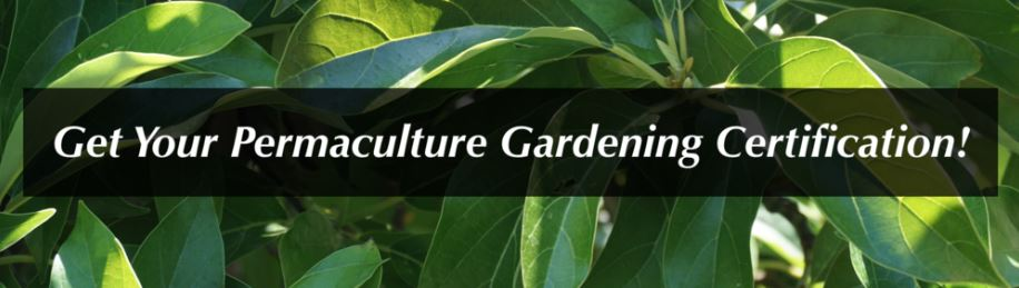 Earn your Permaculture Gardening Certificate